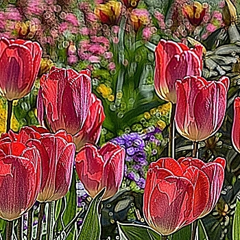 Tulips | LENS MODEL NOT SET <br> Click image for more details, Click <b>X</b> on top right of image to close
