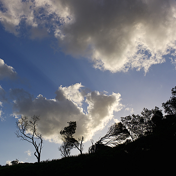 Sunlit clouds, behind Betka Beach, Mallacoota, Australia | LEICA SUMMICRON 35MM F2 ASPH <br> Click image for more details, Click <b>X</b> on top right of image to close
