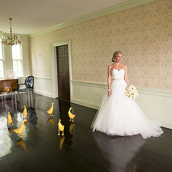 Beekman Mansion Bride | LENS MODEL NOT SET <br> Click image for more details, Click <b>X</b> on top right of image to close