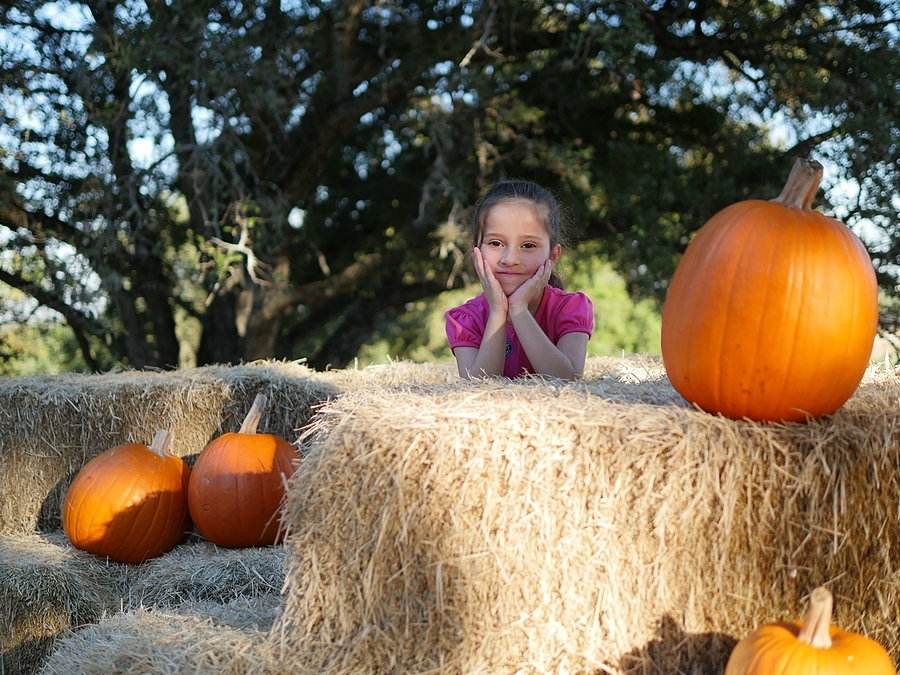 Hay & Pumpkins II | LEICA DG SUMMILUX 25MM/F1.4 ASPH <br> Click image for more details, Click <b>X</b> on top right of image to close