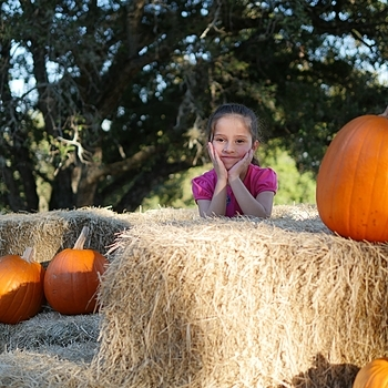 Hay & Pumpkins II | DG SUMMILUX 25MM/F1.4 ASPH