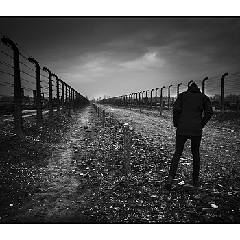 """ A walk in Auschwitz- Birkenau"" 