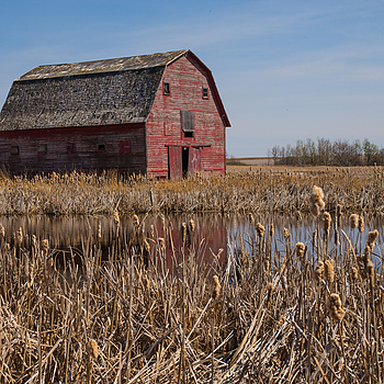 old barn | SUMMILUX-M 1:1.4/50 ASPH
