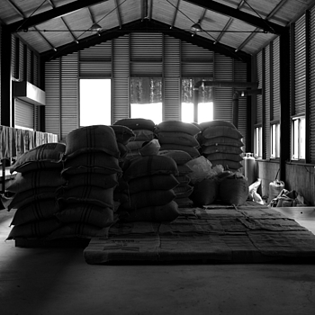 Coffee bean warehouse | CV 35MM / F 1.2 NOKTON <br> Click image for more details, Click <b>X</b> on top right of image to close