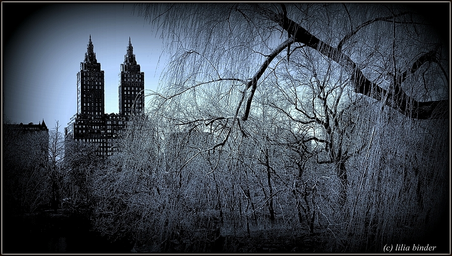 Central Park | LENS MODEL NOT SET <br> Click image for more details, Click <b>X</b> on top right of image to close
