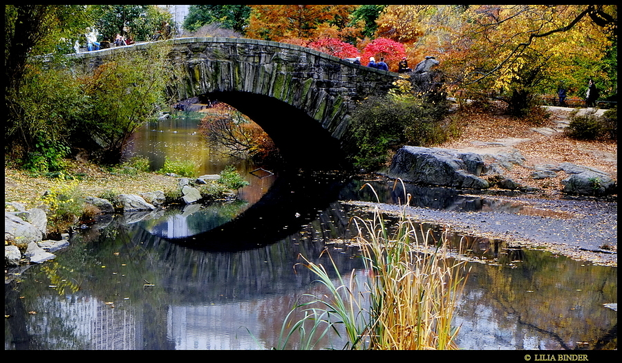 Central Park:  Gapstow Bridge | LENS MODEL NOT SET <br> Click image for more details, Click <b>X</b> on top right of image to close