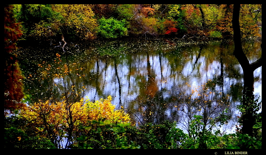 Central Park:  the Pond | LENS MODEL NOT SET <br> Click image for more details, Click <b>X</b> on top right of image to close