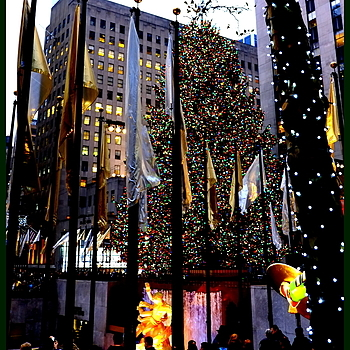 Rockefeller Center | LENS MODEL NOT SET <br> Click image for more details, Click <b>X</b> on top right of image to close
