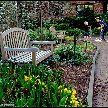 garden path | LENS MODEL NOT SET <br> Click image for more details, Click <b>X</b> on top right of image to close