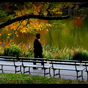 Central Park dandy | LENS MODEL NOT SET <br> Click image for more details, Click <b>X</b> on top right of image to close