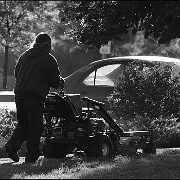 Early morning mow. | LENS MODEL NOT SET