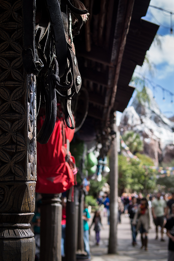 Walking to Expedition Everest | LEICA DG SUMMILUX 25MM/F1.4 ASPH <br> Click image for more details, Click <b>X</b> on top right of image to close