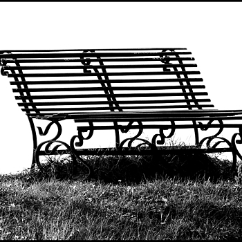A bench and the space