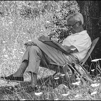 Reading in the shade of an old tree