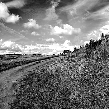 Breton Landscape | LENS MODEL NOT SET <br> Click image for more details, Click <b>X</b> on top right of image to close