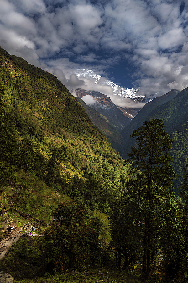 Annapurna Sanctuary | LEICA 28MM SUMMILUX F1.7 AF <br> Click image for more details, Click <b>X</b> on top right of image to close