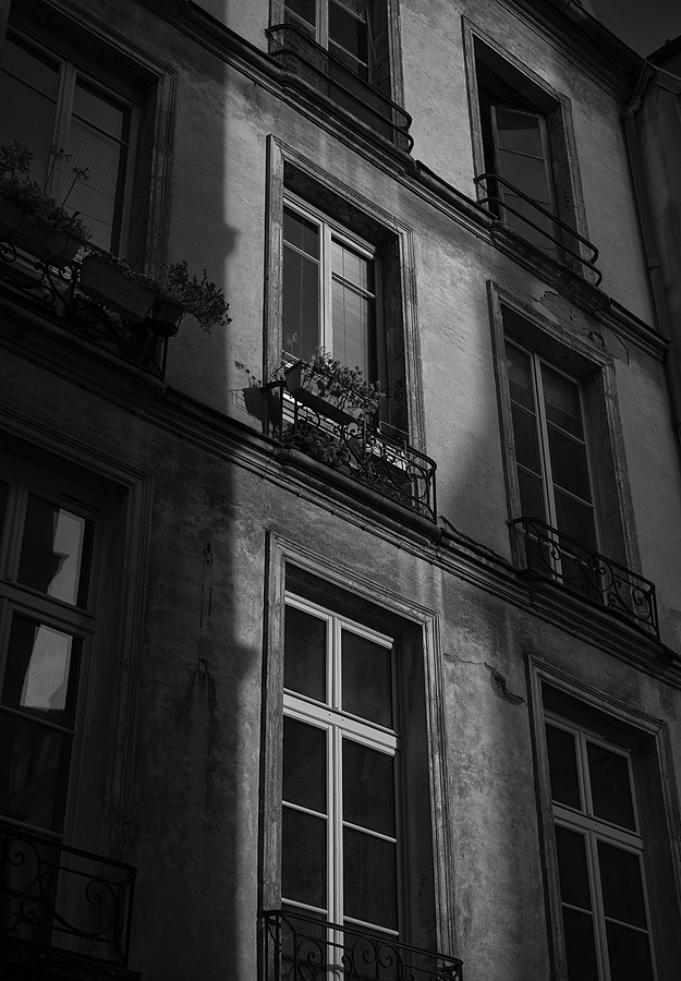 Paris windows | SUMMILUX-M 1:1.4/50 ASPH <br> Click image for more details, Click <b>X</b> on top right of image to close