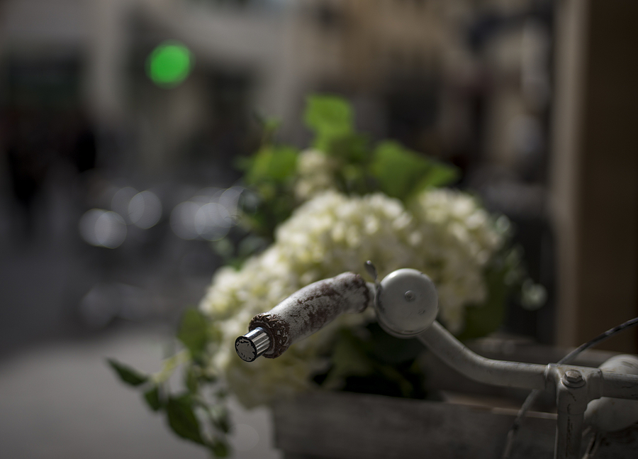 Bike and flowers | SUMMILUX-M 1:1.4/50 ASPH <br> Click image for more details, Click <b>X</b> on top right of image to close