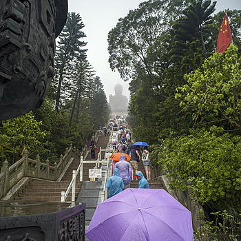 Big Buddha | ZEISS ZM BIOGON T* F2.8 21MM <br> Click image for more details, Click <b>X</b> on top right of image to close