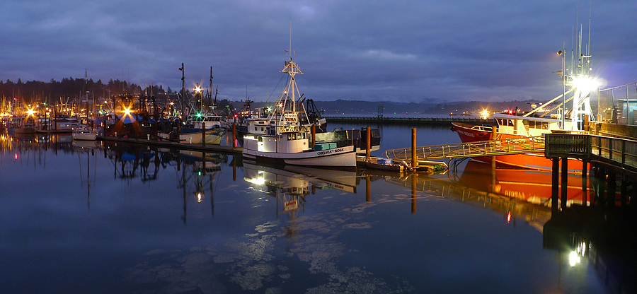 Newport Oregon at night | DC VARIO-SUMMICRON 1:2.0-3.3/5.1-19.2 ASPH <br> Click image for more details, Click <b>X</b> on top right of image to close