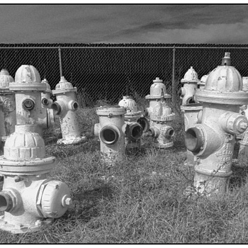 Hydrant Heaven | DC-VARIO-SUMMILUX 4.7–17.7MM F/1.4–2.3 <br> Click image for more details, Click <b>X</b> on top right of image to close