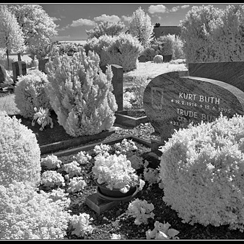 Cemetery | LEICA ELMAR 24MM F3.8 ASPH <br> Click image for more details, Click <b>X</b> on top right of image to close