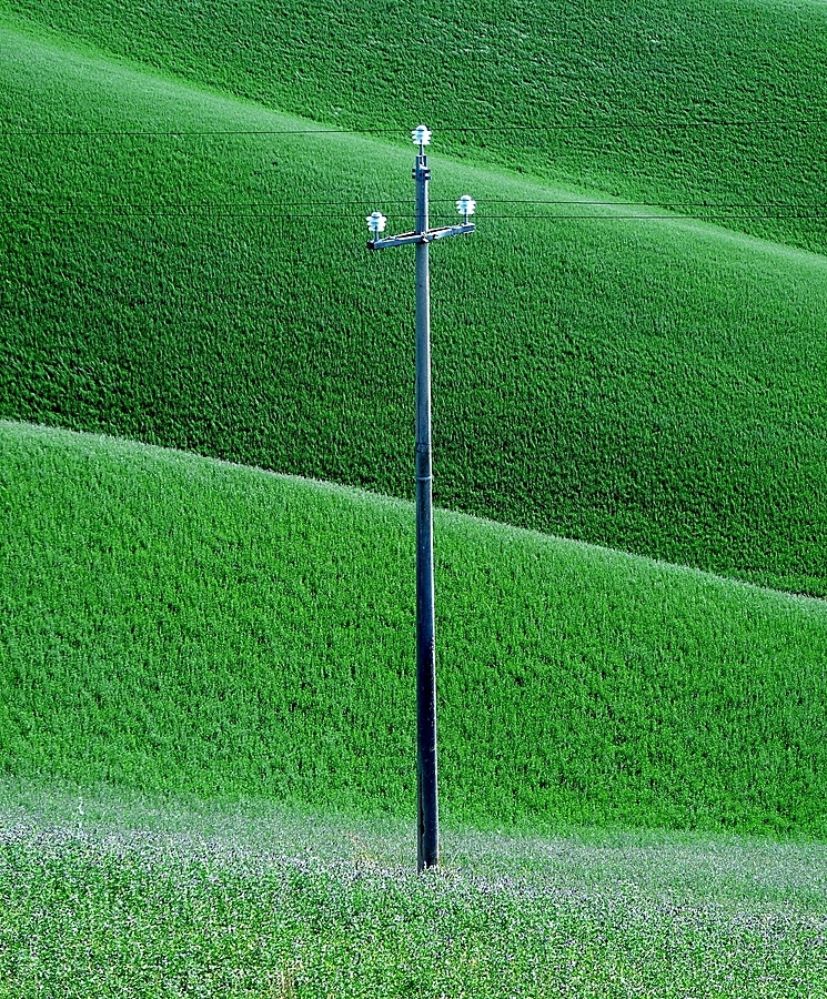 Italian hills: the green | LEICA DC VARIO-ELMARIT 1:2.8-3.7/7.4-88.8 ASPH <br> Click image for more details, Click <b>X</b> on top right of image to close