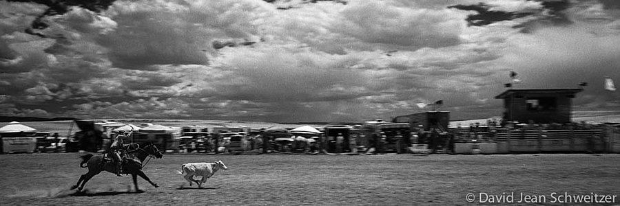 Cowgirl Roping Young Bull | LEICA SUMMICRON 35MM F2. <br> Click image for more details, Click <b>X</b> on top right of image to close