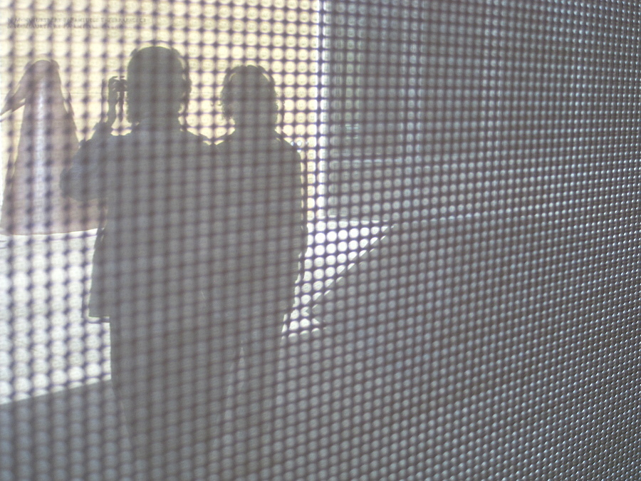 Through a Window Screen | LENS MODEL NOT SET <br> Click image for more details, Click <b>X</b> on top right of image to close