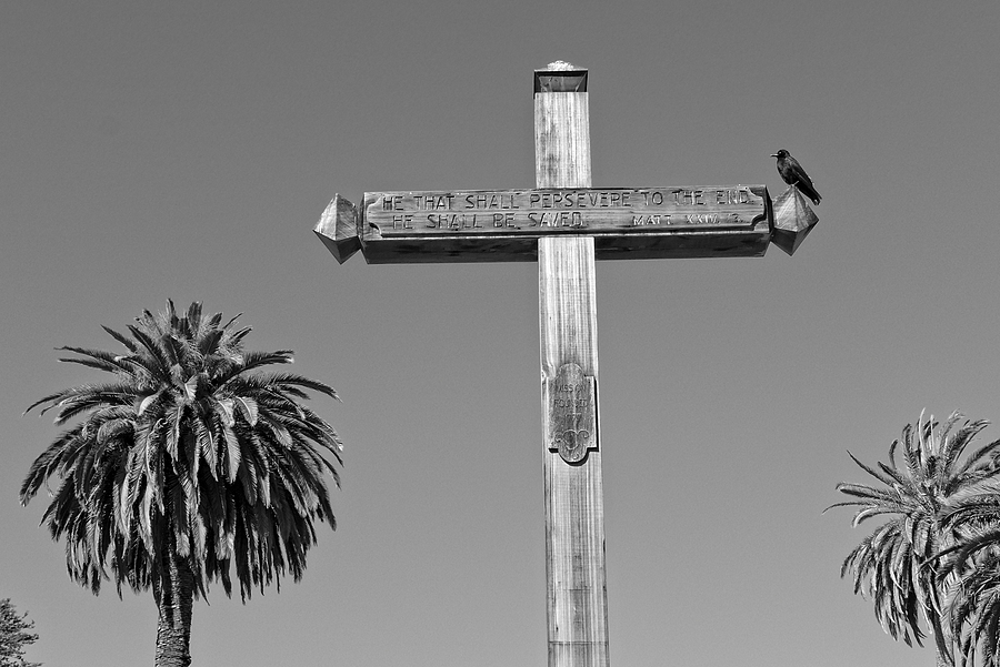 Crow and Cross | DC VARIO SUMMICRON 1:2.0-5.9 / 6.0-42.8 ASPH <br> Click image for more details, Click <b>X</b> on top right of image to close