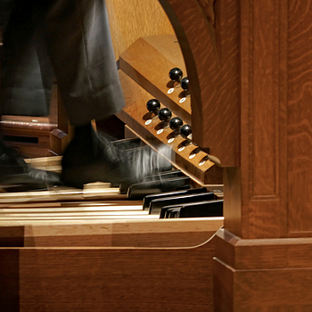 The Organist | LENS MODEL NOT SET <br> Click image for more details, Click <b>X</b> on top right of image to close