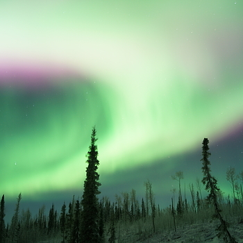 Northern light at Yukon River in Alaska | LENS MODEL NOT SET <br> Click image for more details, Click <b>X</b> on top right of image to close