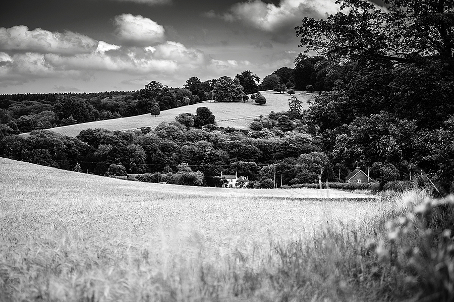 Thames Valley, Near Henley UK. | LEICA SUMMARIT 75MM F2.5 <br> Click image for more details, Click <b>X</b> on top right of image to close