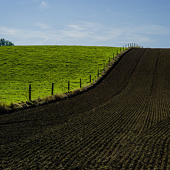 Ploughed. | ZEISS ZM C SONNAR T* F1.5 50MM <br> Click image for more details, Click <b>X</b> on top right of image to close
