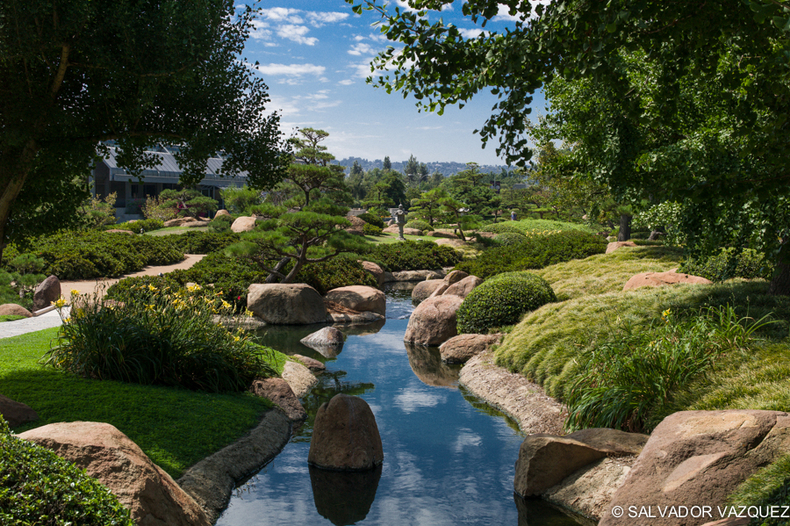 Japanese Garden, Van Nuys | SUMMILUX-M 1:1.4/50 ASPH <br> Click image for more details, Click <b>X</b> on top right of image to close