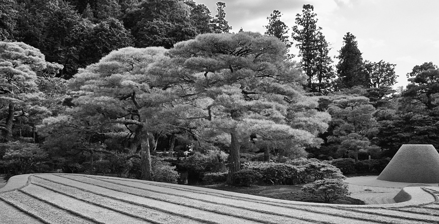 Rock Garden, Kyoto, Japan | DG VARIO-SUMMICRON 28-90MM F2-2.4 <br> Click image for more details, Click <b>X</b> on top right of image to close