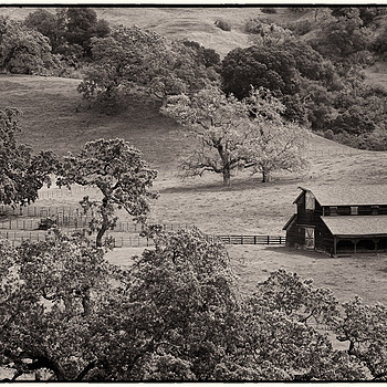Barn, Sunol Regional Wilderness, CA | LEICA SUMMARIT 90MM F2.5 <br> Click image for more details, Click <b>X</b> on top right of image to close