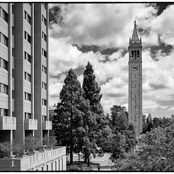 UC Berkeley Tower | LEICA ELMAR 24MM F3.8 ASPH <br> Click image for more details, Click <b>X</b> on top right of image to close