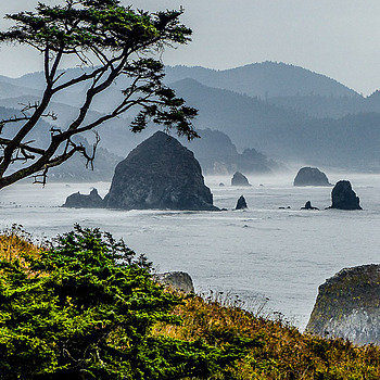 Oregon Coast | LENS MODEL NOT SET <br> Click image for more details, Click <b>X</b> on top right of image to close