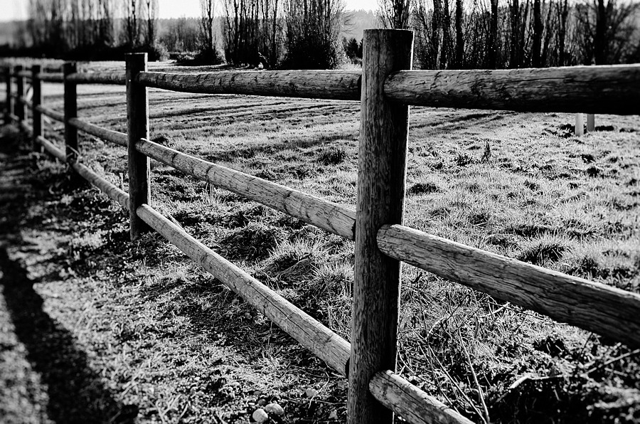 Fence Friday | LEICA X1 ELMARIT 24MM F/2.8 ASPH <br> Click image for more details, Click <b>X</b> on top right of image to close