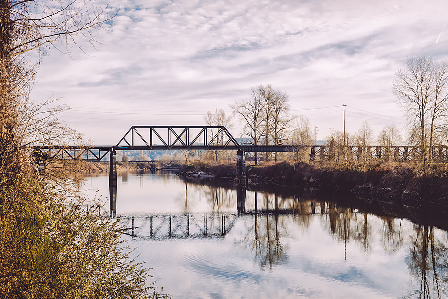 Snohomish River | SUMMILUX-M 1:1.4/50 ASPH <br> Click image for more details, Click <b>X</b> on top right of image to close