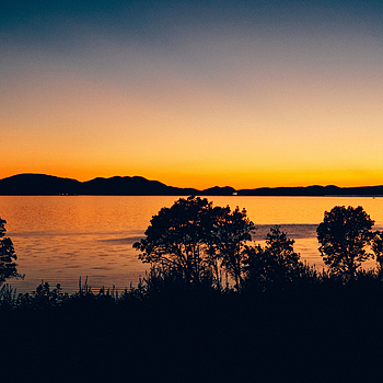 The Color  After Sunset Over Samish Bay | LEICA SUMMITAR 50MM F/2