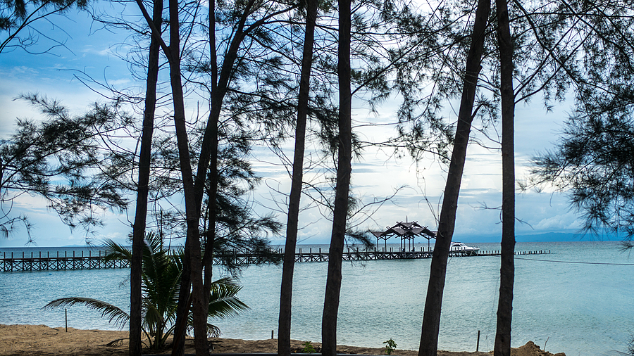 PULAU 3 JETTY THRU ARU TREES | LEICA SUMMILUX 35MM F1.4 ASPH <br> Click image for more details, Click <b>X</b> on top right of image to close