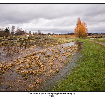 The snow is gone, can spring be on the way :-)) | LEICA ELMAR 24MM F3.8 ASPH
