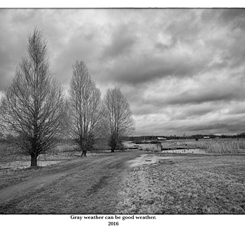 Gray weather can be good weather. | LEICA ELMAR 24MM F3.8 ASPH