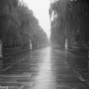 The Sacred Way of Ming Dynasty Tombs (Built in 1435) | LEICA SUMMILUX 50MM F/1.4 PRE ASPH (E43)
