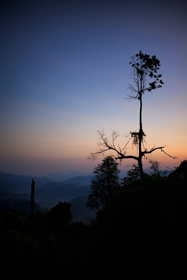 Early Lights in Janda Baik, Pahang, Malaysia | LEICA SUMMILUX 35MM F1.4 ASPH <br> Click image for more details, Click <b>X</b> on top right of image to close