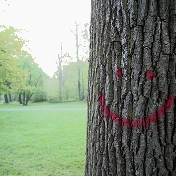 A tree with a smile | LEICA 21MM SUPER-ELMAR-M F/ 3.4 ASPH LENS <br> Click image for more details, Click <b>X</b> on top right of image to close