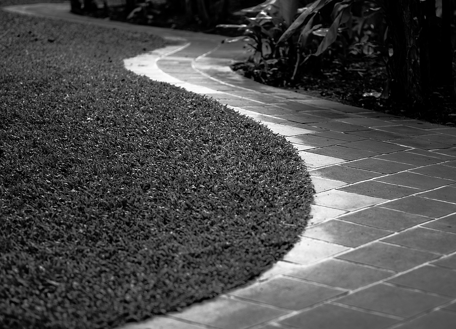 leicaimages.com gallery | Banana grove footpath | Leica APO-SUMMICRON 75mm f2 ASPH | LEICA M (Typ 240)