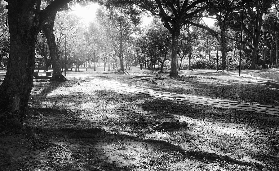 leicaimages.com gallery | Morning sun streaming in | Leica ELMARIT 28mm f2.8 | LEICA M (Typ 240)
